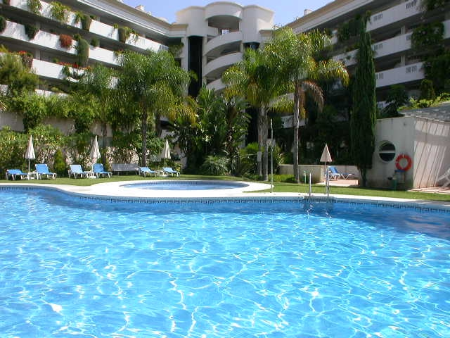 Communal pool and gardens