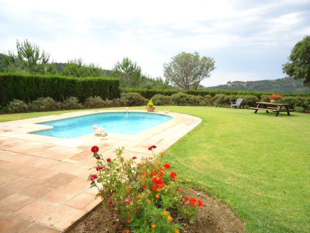 pool + garden