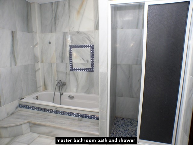 master bathroom bath and shower