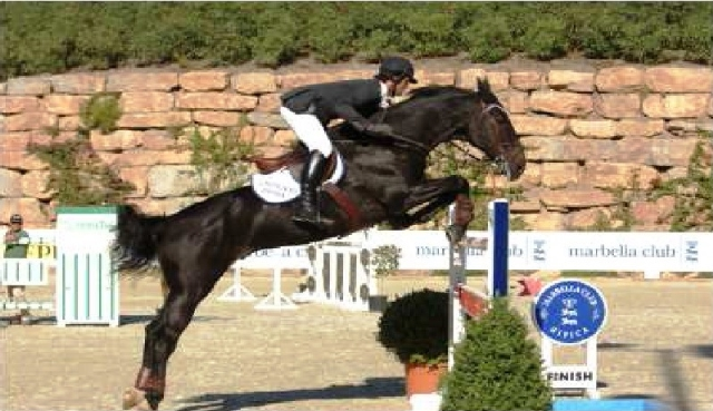 Riding club - Official Jumping Championships