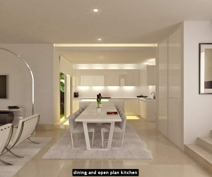 dining and open plan kitchen