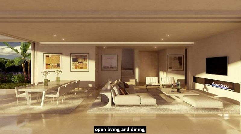open living and dining