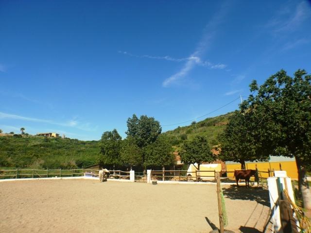 Picadero-Riding ring 600 m2