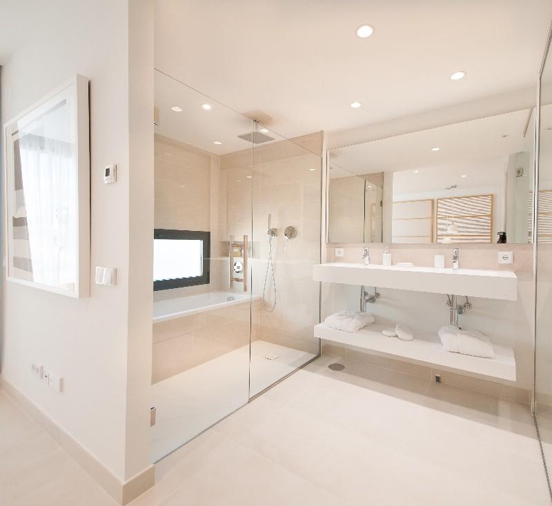 bathroom showflat