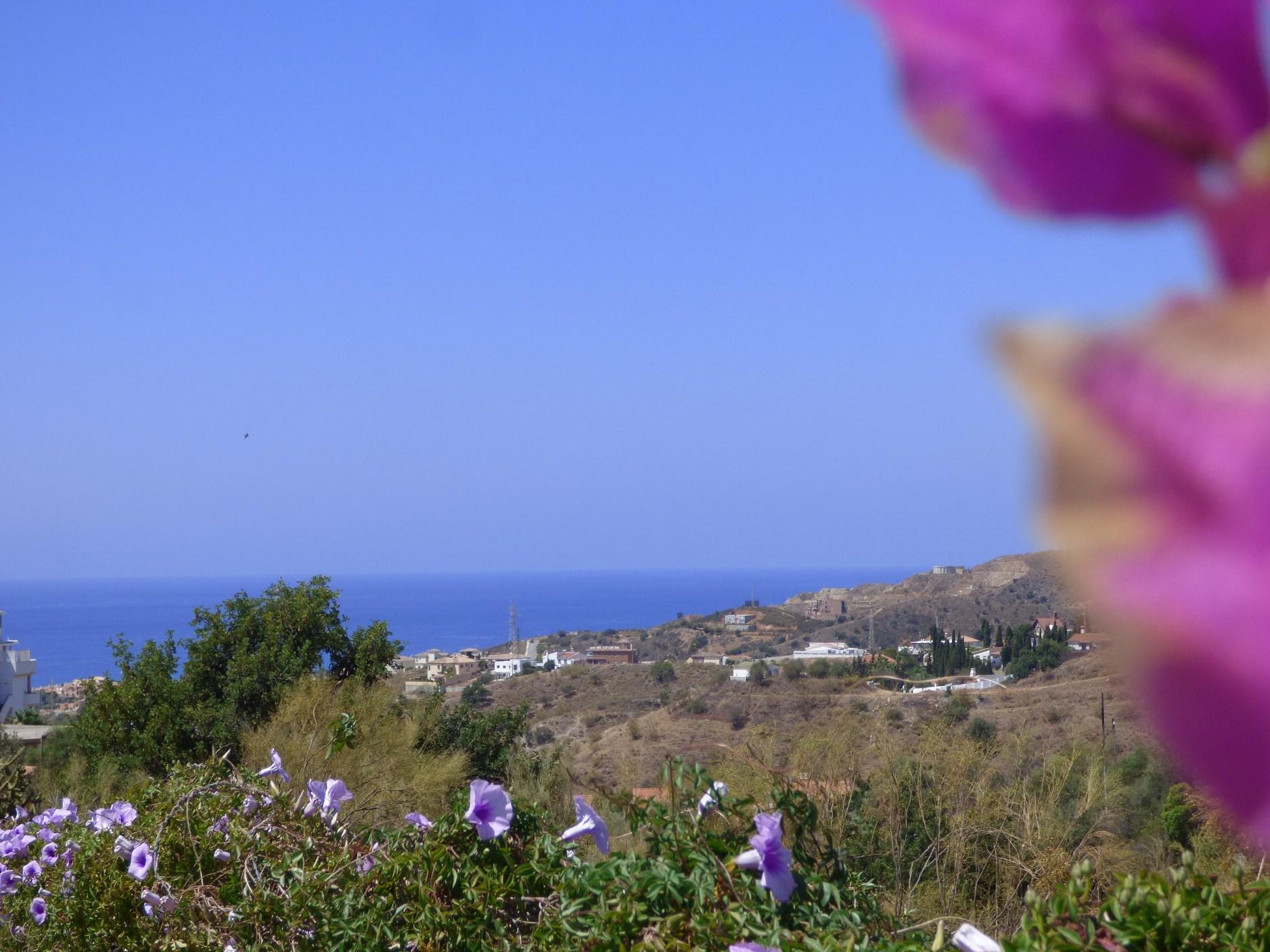 sea & garden2