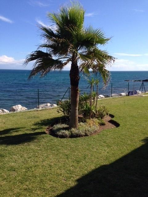 garden-rightcasa-lacala