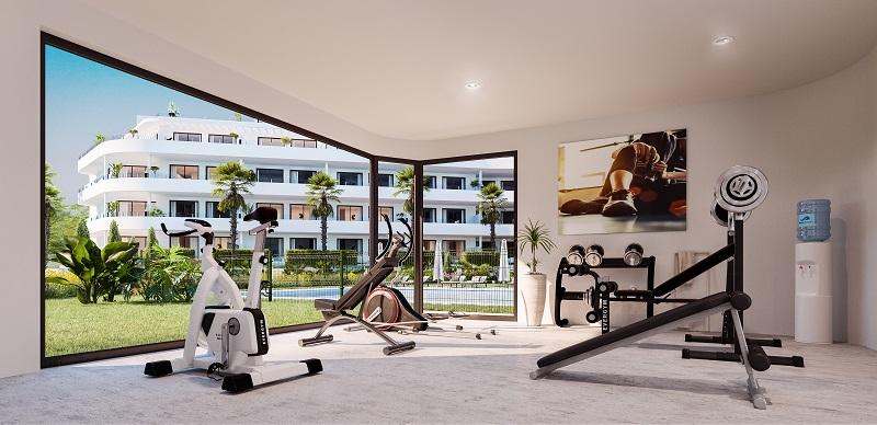 1715-gym