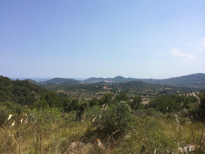 More on our Plot/Development opportunities for Sale in Arta, North East Mallorca, Mallorca, Spain